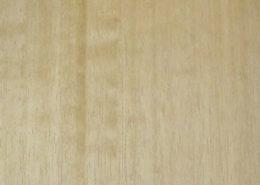 Eucaliptus Linen