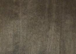 Poplar Darkgray